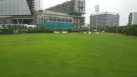 Zielonej trawy dywan na krykiet ziemi Zdjęcie Royalty Free