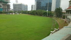 Zielonej trawy dywan na krykiet ziemi Obraz Royalty Free