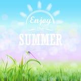 Zielonej trawy gazon z bokeh niebieskim niebem Cieszy się lato tekst na Kwiecistym natury lata wiosny tle ilustracji