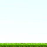 Zielonej trawy gazon z wschodem słońca na niebieskim niebie również zwrócić corel ilustracji wektora ilustracja wektor