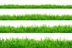 Zielonej trawy granica odizolowywająca na białym tle fotografia stock