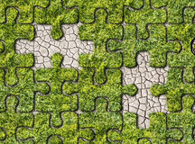 Zielonej trawy narastający odciski stopy na białym tle Zdjęcie Royalty Free