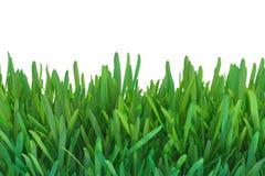 Zielonej trawy natura zasadza gazon 3d odpłaca się naturalnego tło royalty ilustracja