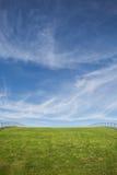 Zielonej trawy niebieskie niebo i dach Zdjęcia Royalty Free