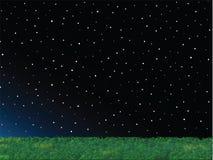 Zielonej trawy nocnego nieba krajobraz ilustracja wektor