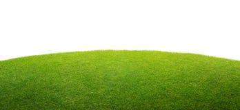 Zielonej trawy odosobniony tło fotografia royalty free
