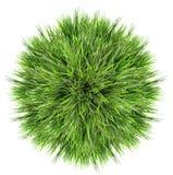 Zielonej trawy piłka Obrazy Royalty Free
