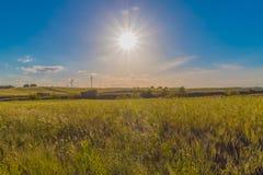 Zielonej trawy pola krajobraz pod niebieskim niebem w wiośnie z chmurami w tle Zdjęcia Stock
