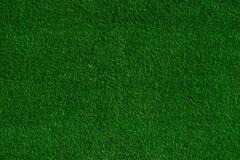 Zielonej trawy pola tło, tekstura, wzór Obraz Royalty Free