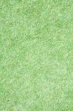 Zielonej trawy pole Fotografia Royalty Free