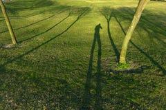 Zielonej trawy pole Zdjęcia Royalty Free