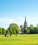 Zielonej trawy pole w Cambridge Fotografia Royalty Free