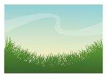 Zielonej trawy rośliny projekt royalty ilustracja