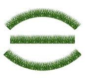 Zielonej trawy rośliny projekt ilustracji