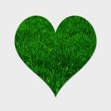 Zielonej trawy serce Zdjęcie Stock