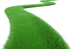 Zielonej trawy sposób, 3D rendering Zdjęcie Royalty Free