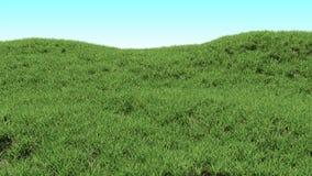 Zielonej trawy tło Górkowaty krajobraz zakrywający z trawą royalty ilustracja
