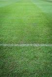 Zielonej trawy tło z tekst przestrzenią Obrazy Stock