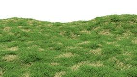 Zielonej trawy tło z wyspami sucha więdnąca trawa Górkowaty krajobraz zakrywający z trawą ilustracji
