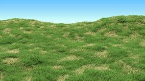 Zielonej trawy tło z wyspami sucha więdnąca trawa Górkowaty krajobraz zakrywający z trawą ilustracja wektor