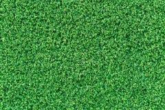 Zielonej trawy tekstura lub zielonej trawy tło Fotografia Royalty Free