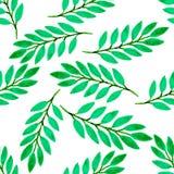 Zielonej tropikalnej liść akwareli bezszwowy wzór Wektorowa tekstura z ręki farbą ilustracji