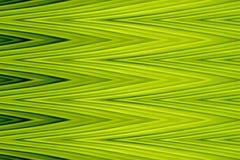 Zielonej zygzag fala ostrej sztuki abstrakcjonistyczny tło (Robić od bananów liści) Obrazy Stock