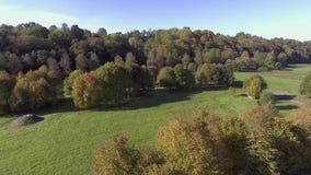 Zielony łąki widok z lotu ptaka zdjęcie wideo