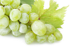 Zielony świeżości winogrono zdjęcia royalty free