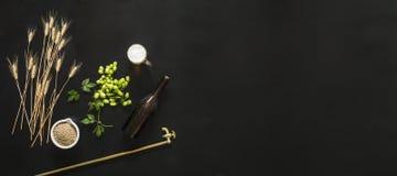 zielony świeży chmiel na czarnym tle z piwem, obrazy stock