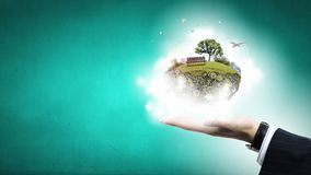 Zielony życie w nasz rękach Zdjęcie Royalty Free