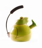zielony żaba czajnik Zdjęcie Royalty Free