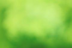 Zielony Abstrakcjonistyczny Lasowy natury tło Fotografia Stock
