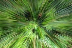 Zielony abstrakcjonistyczny tło z ostrymi cierniami Obraz Stock