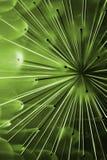 Zielony abstrakcjonistyczny uczucie obraz stock