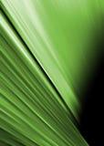 Zielony abstrakta tło royalty ilustracja