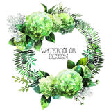 Zielony akwareli hortensi wianek ilustracja wektor