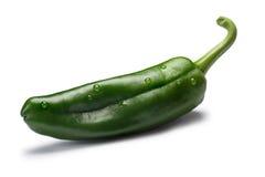 Zielony Anaheim chile, ścieżki zdjęcia royalty free