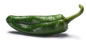 Zielony Anaheim chile, ścieżki fotografia stock