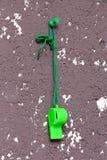 Zielony arbitra gwizd, sporta temat Zdjęcie Royalty Free
