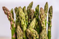 Zielony asparagus Zdjęcie Stock