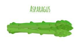 Zielony asparagus, butch dojrzała asparagus flanca również zwrócić corel ilustracji wektora Fotografia Stock