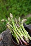 Zielony asparagus w drewnianym pucharze Zdjęcia Stock