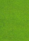 Zielony błyskotliwości tło, abstrakcjonistyczny kolorowy tło Obrazy Royalty Free