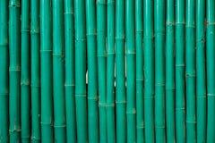 Zielony bambusa wzór Fotografia Stock