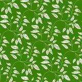 Zielony bezszwowy tło z wibrującymi liśćmi royalty ilustracja