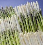 zielony białych szparagów Zdjęcia Royalty Free