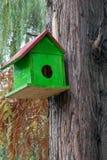 Zielony birdhouse w naturze zdjęcie royalty free