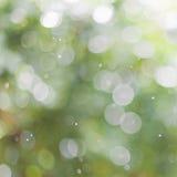 Zielony Bokeh abstrakcyjny tło Zdjęcia Stock