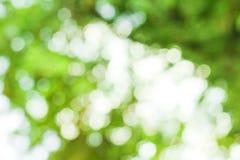 Zielony bokeh tło, zielony bokeh Obrazy Stock